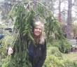 landscaping_sarah whipple