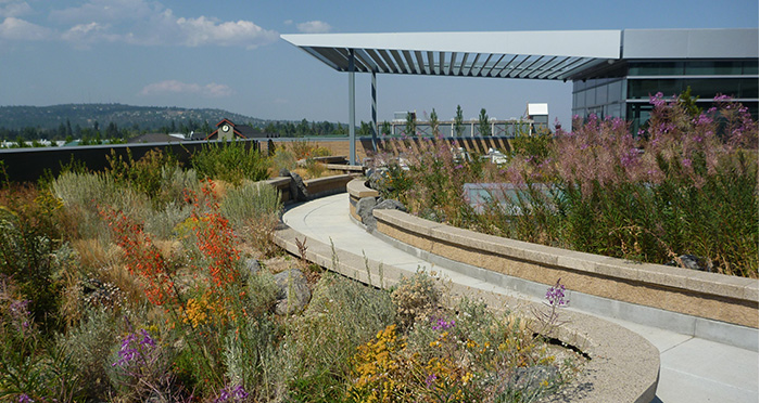 The Future Of Landscape Design Water Climate Change Public Perception