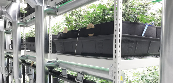 Sisters-based Smart Grow Systems