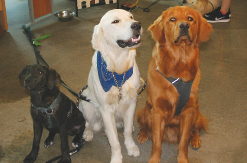(L-R) Montey, Bodie and Bodie at G5. Photo by Jamie Wood.