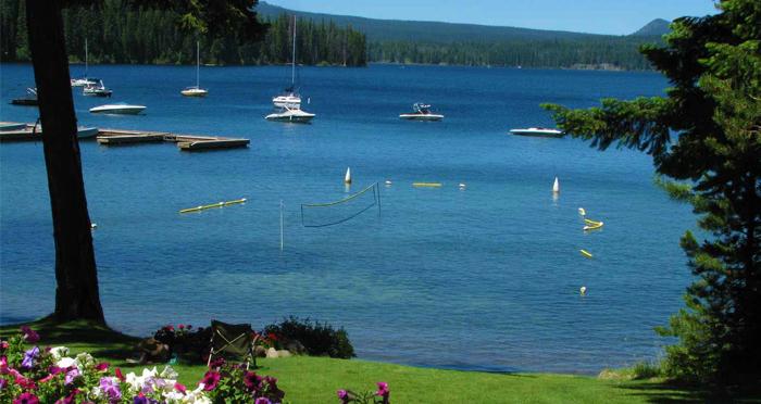 Hazard trees close cultus lake campground day use area for Cabins at cultus lake