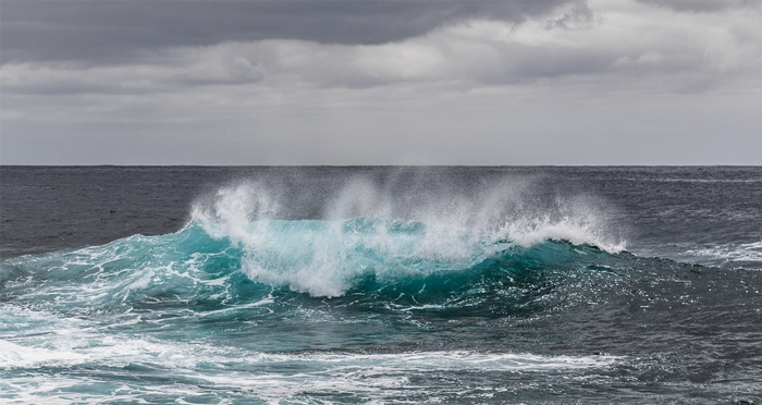 international-ocean-film