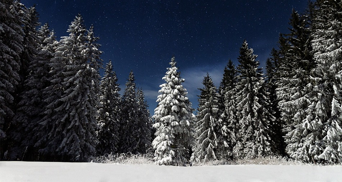 snow-at-night