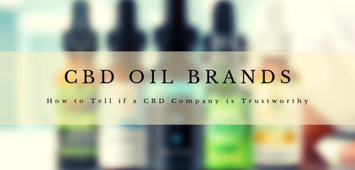 CBD Oil Brands – How to Tell if a CBD Company is Trustworthy