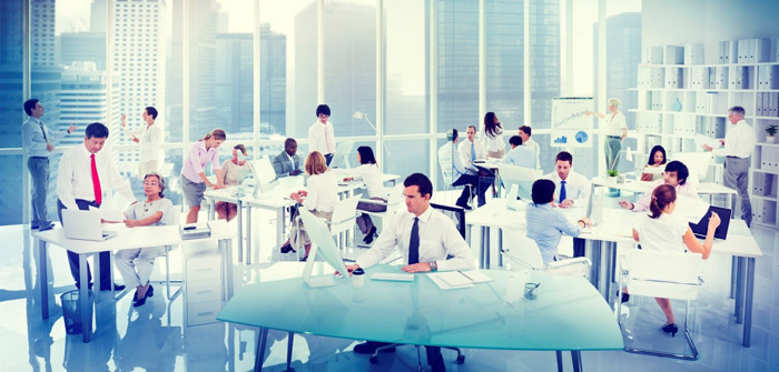 creating-the-perfect-work-environment-for-employees