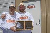 CBN_13_May15_Liddells_Bees